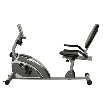 Exerpeutic 900XL Extended Capacity Recumbent Bike with Equipment Mat