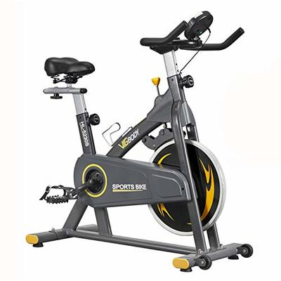 VIGBODY Exercise Bikes Stationary Bike With Adjustable Magnetic Resistance Belt Drive Bicycle With Comfortable Seat Cushion (Gray)