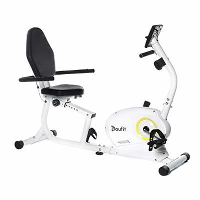 Recumbent Exercise Bike for Adults Seniors, Doufit EB-02 Indoor Magnetic Exercise Bicycle for Home Workout with 8 Resistance Levels and Adjustable Seat